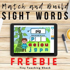 Match and Build Sight Words